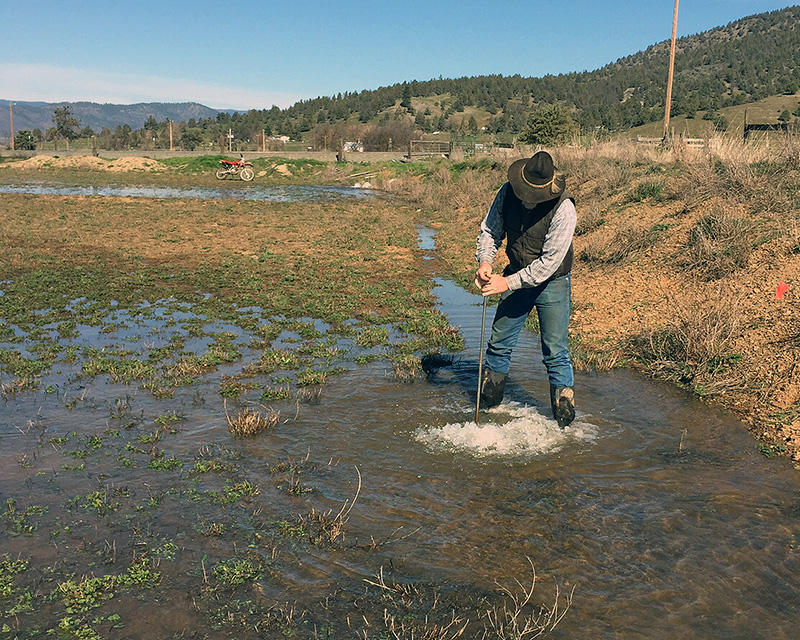 Bryan-Morris Ranch manager Jim Morris stands in a flooded alfalfa field along the Scott River in Siskiyou County. (Photo courtesy Steve Orloff)