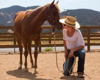 Hayley Pelton, a trainer at El Campeon Farms, plants a quick kiss on Catalina.