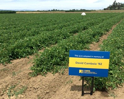 A one-acre plot at the UC Davis Russell Ranch has been named to honor Dave Camboia by his friend DeWayne Quinn.