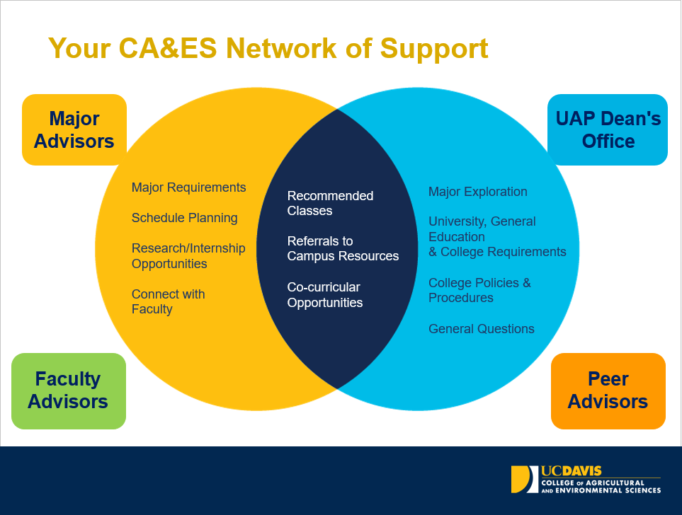 Network of Support