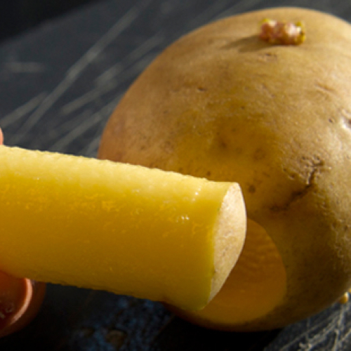 potato and it's core
