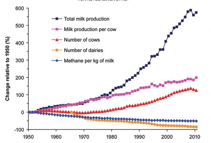 Changes (relative to 1950) in total milk produced, milk production per cow, total number of cows and dairies and methane produced per kilogram of milk in the California dairy industry. Graphic: Ermias Kebreab