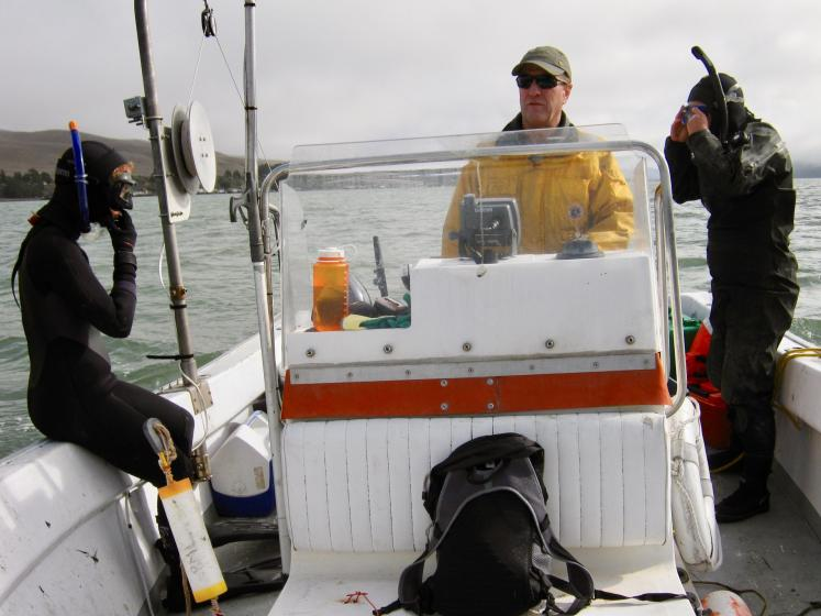 Professor Ted Grosholz pilots the boat while UC Davis graduate student Jordan Hollarsmith (left) and James Farlin (far right) of the UC Davis Bodega Marine Laboratory prepare to dive in California's Tomales Bay. (Manon Picard/UC Davis)
