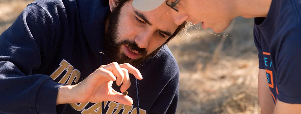 UC Davis students study soil at the