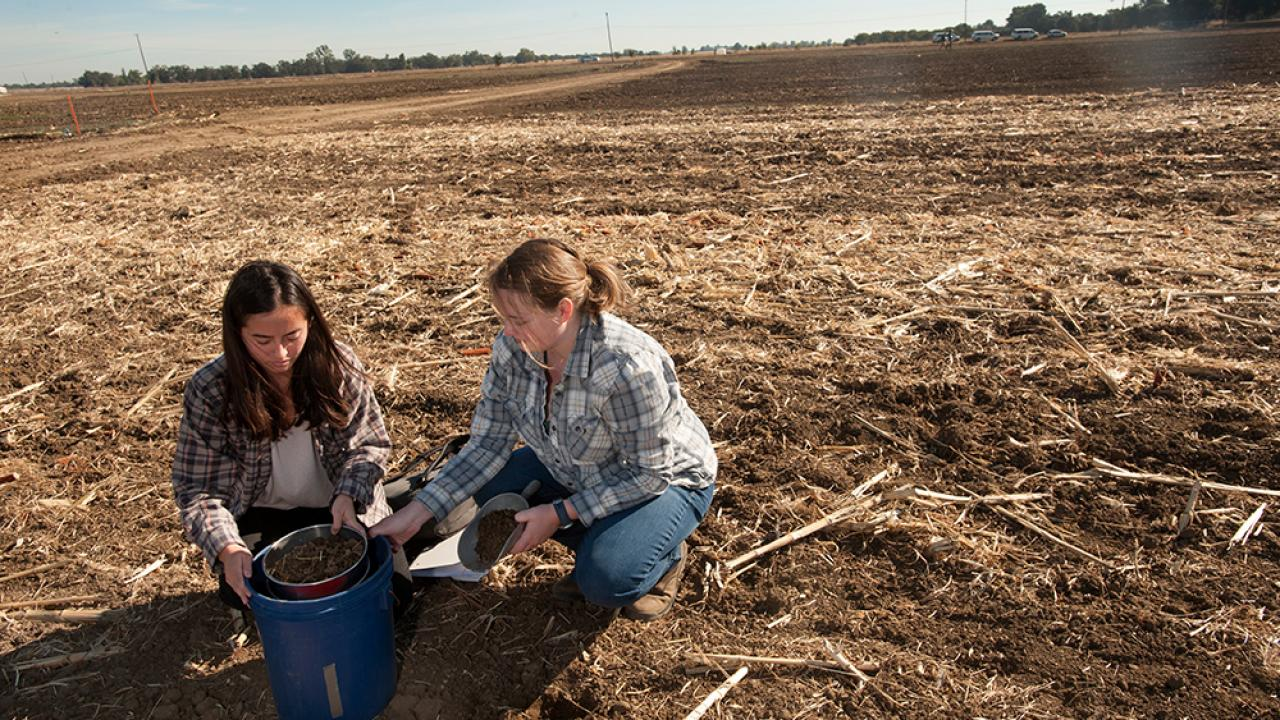 Students Mia Kawamoto and Amy Bump sift soil together during a class at Russell Ranch. (Gregory Urquiaga/UC Davis)