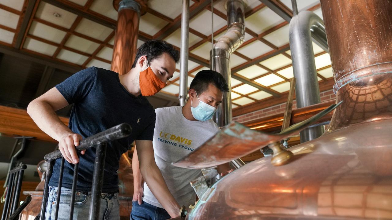 Charlie Thudium, left, and Baoluo Gao observe their ale-in-the-making at Sudwerk Brewing Co. (Karin Higgins/UC Davis)
