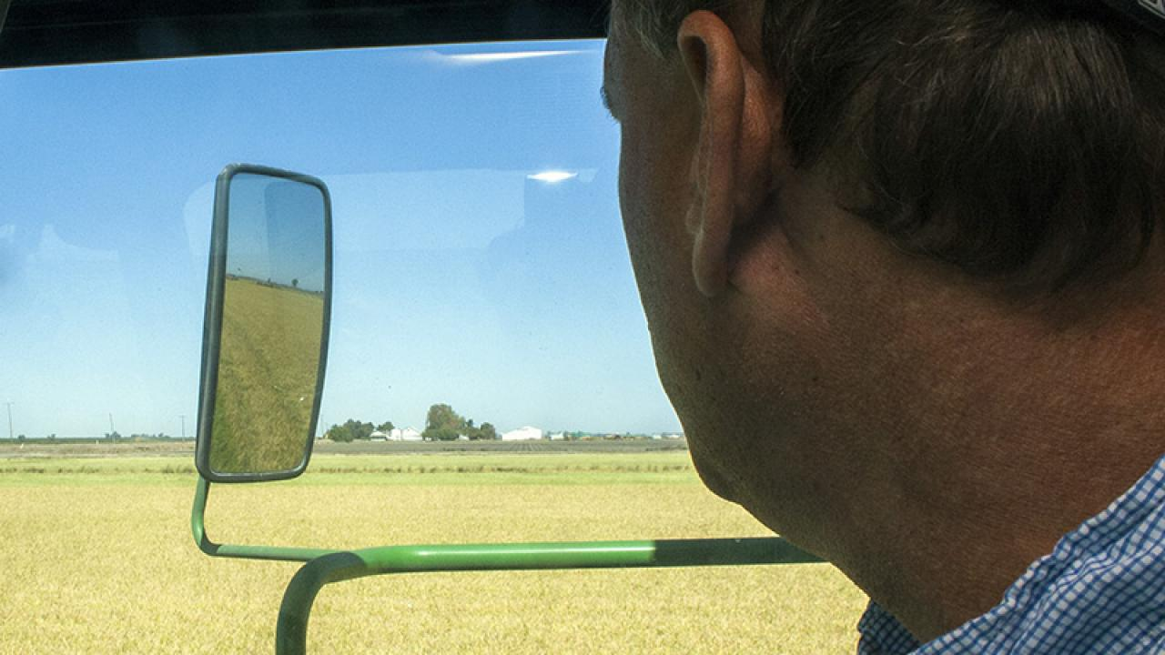 Colusa County rice farmer George Tibbitts farms his grandfather's ranch. (Brad Hooker | UC Davis)