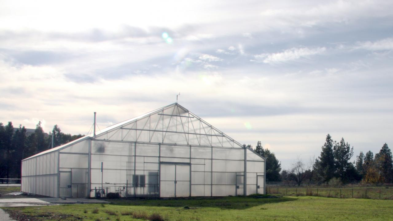 New greenhouses are on their way this year to join this one on Extension Center Drive.