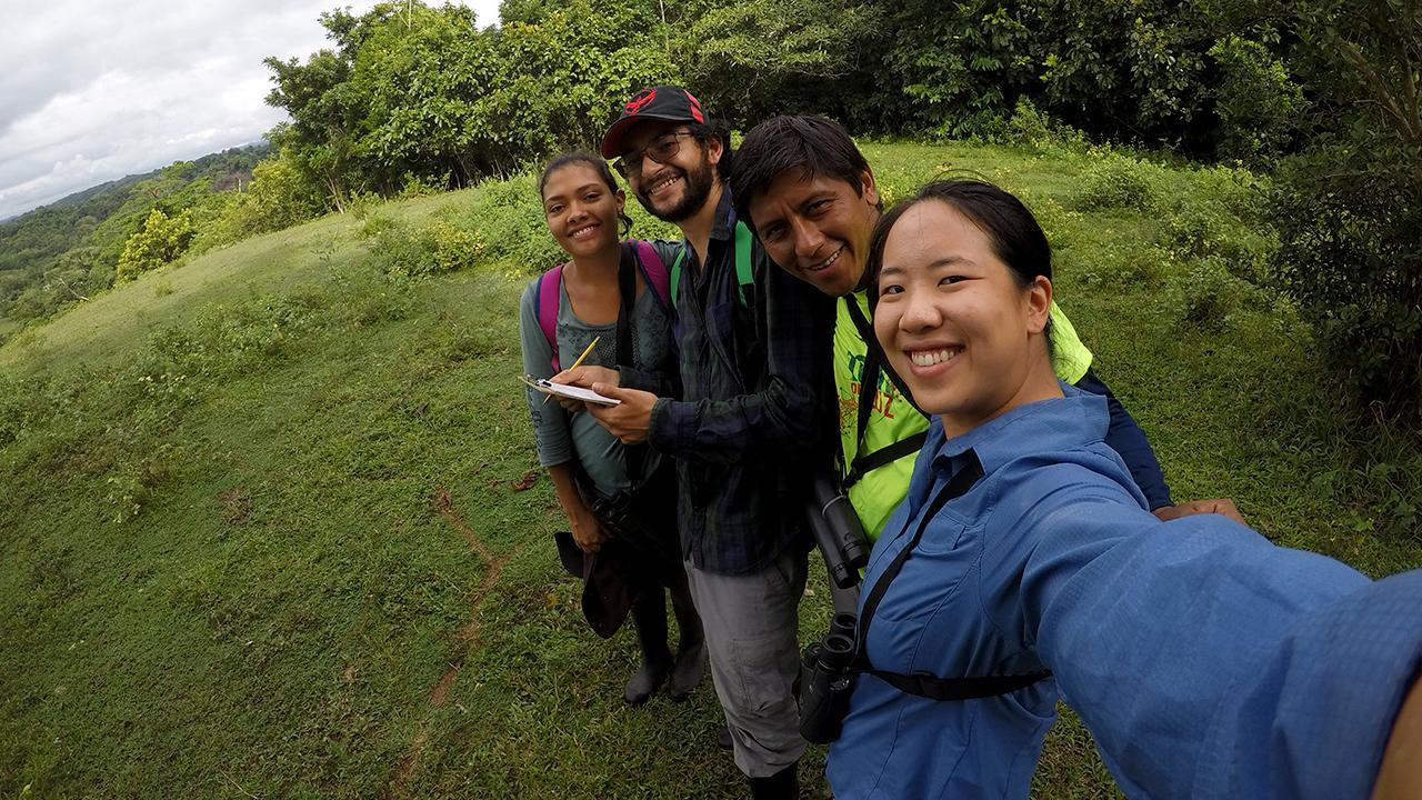 Graduate student Alison Ke (foreground) explores bird communities in Caldas, Colombia, with field assistants Manuel Sanchez and Mario Loaiza and Colombian undergraduate student Estefania Guzman. Colombia is home to nearly 2,000 species of birds, including the bare-faced ibis (above), which Ke observed in Santander, Colombia. (Alison Ke/UC Davis)