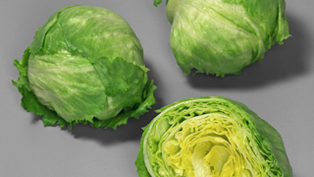 Discovering the gene mechanism that inhibits hot-weather germination in lettuce seeds could be increasingly important as global temperatures rise plant, predicts plant scientist Kent Bradford.