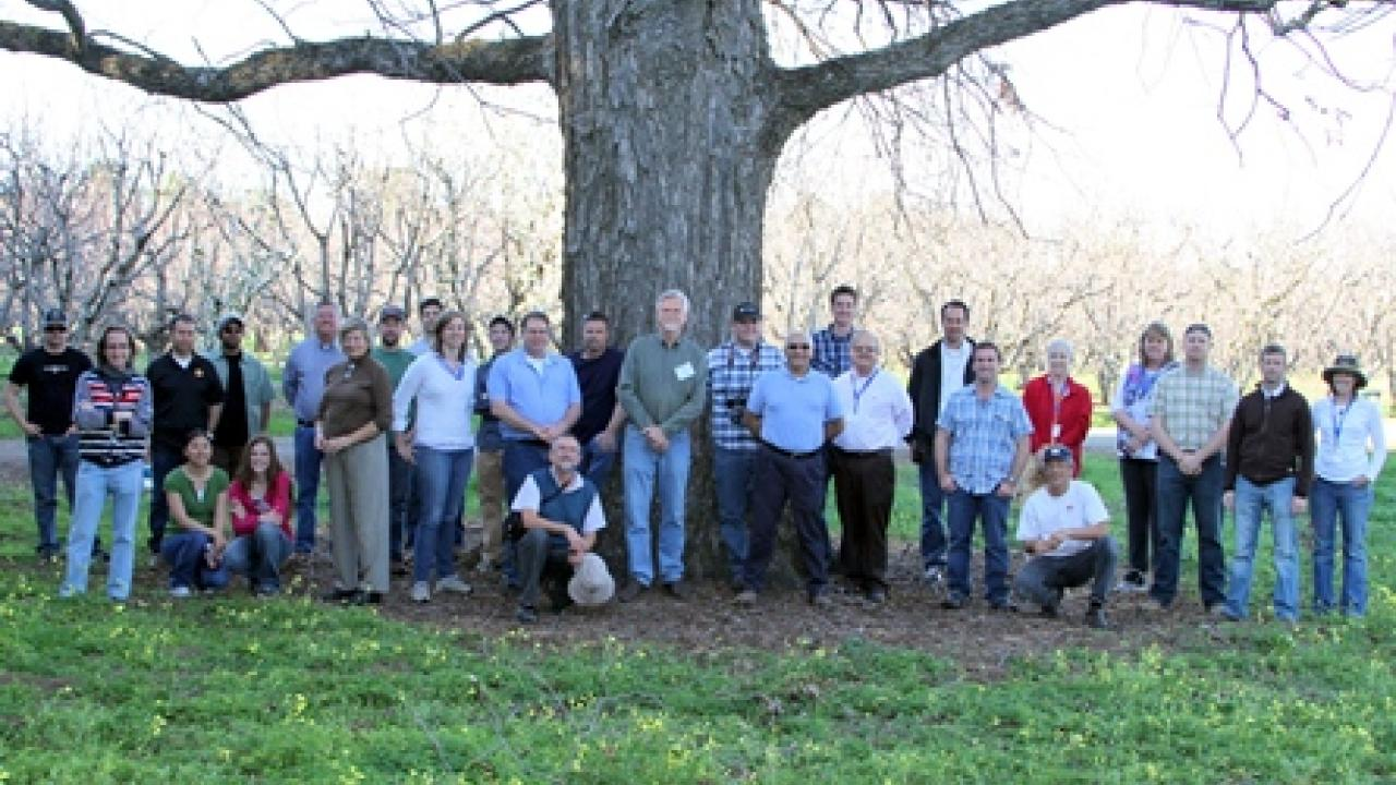 Participants in the 2013 Pomology Short Course. Instructor Ted DeJong is standing directly in front of the tree.
