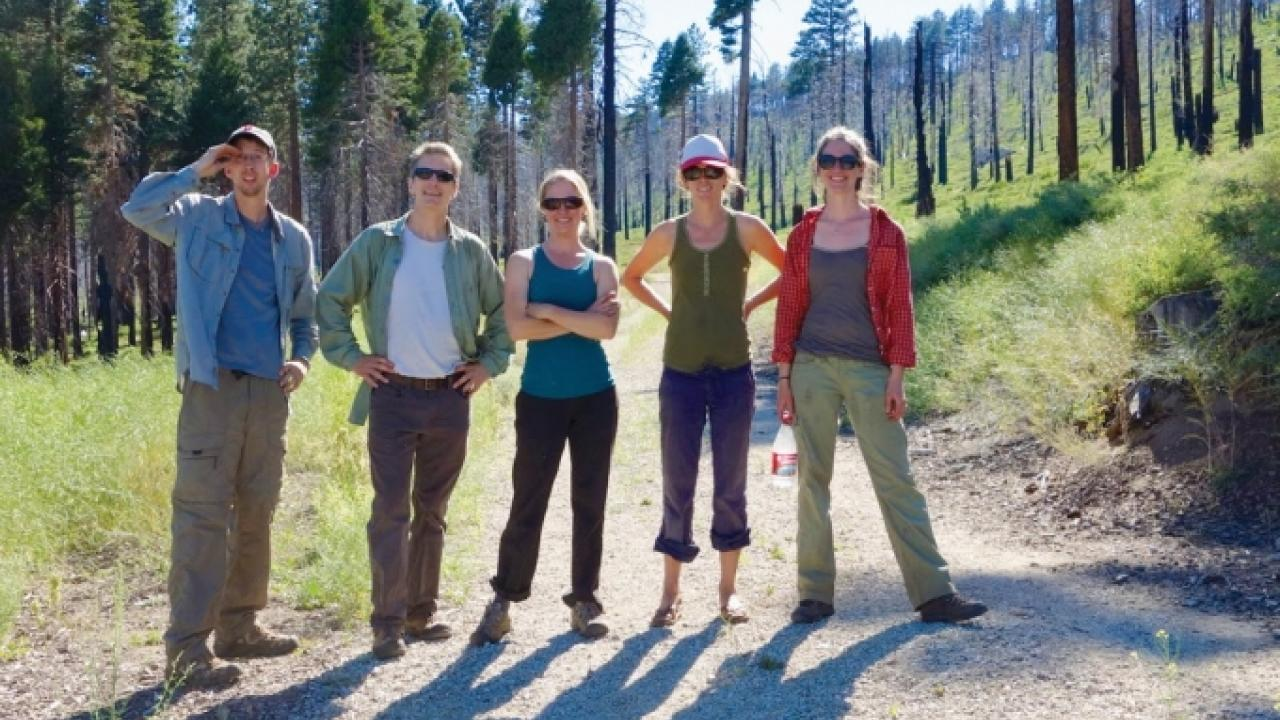 Professor Andrew Latimer, second from the left, and his former Ph.D. student Jens Stevens, left, visit the Angora Fire site near Lake Tahoe with members of the U.S. Forest Service. The team traveled to 12 sites in California in 2013 to study the effects o