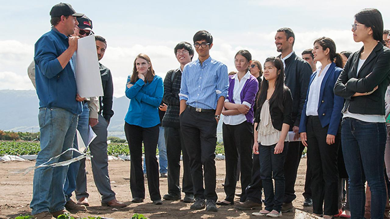 Robert Wall (left), a technician with berry producer Reiter Affiliated Companies, explains a strawberry research project to students. (Robin DeRieux | UC Davis)