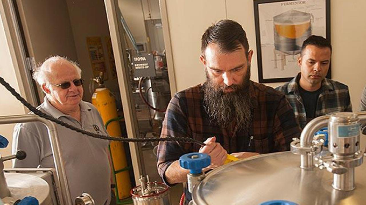 Professor Charlie Bamforth, left, and brewer Joe Williams, second from left, confer as beer is brewed in the UC Davis brewery. Williams is UC Davis' first endowed brewer, thanks to a gift received in the last fiscal year.