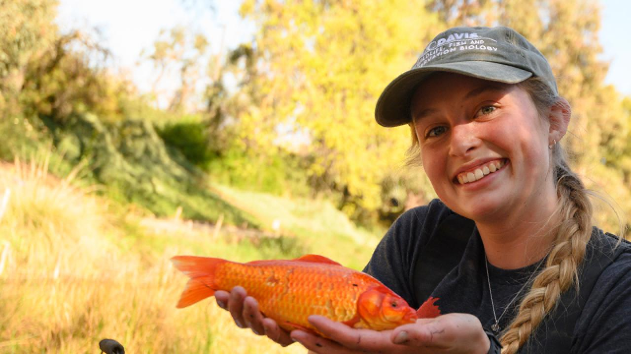 Rachel McConnell holds the large goldfish caught  during a carp research project in the Arboretum Waterway on March 4, 2020.