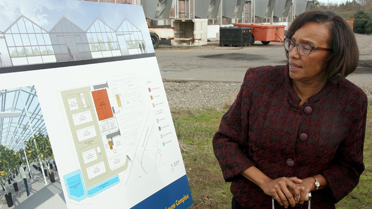 Dean Helene Dillard looks forward to construction of new greenhouses where researchers can customize light and temperature for each and every plant, all under the same roof.