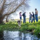 Pip the dog walks away from, from left, Nancy Scolari, executive director of the Marin Resource Conservation District; Ken Tate, CA&ES professor and Cooperative Extension specialist; Mike and Sally Gales, owners of Chileno Creek Ranch in Petaluma; and David Lewis, director of Cooperative Extension in Marin County.