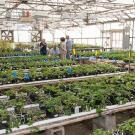 The college hopes to break ground this year a greenhouse expansion project.