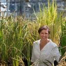 Pam Ronald, distinguished professor in the Department of Plant Pathology and Genome Center, is known for her engineering of flood tolerant rice.