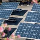 Solar panels shade cars, produce energy and spare natural lands at this parking lot in Atlanta, Georgia. (Getty)