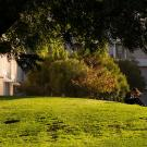 Student reading outside on the UC Davis campus.