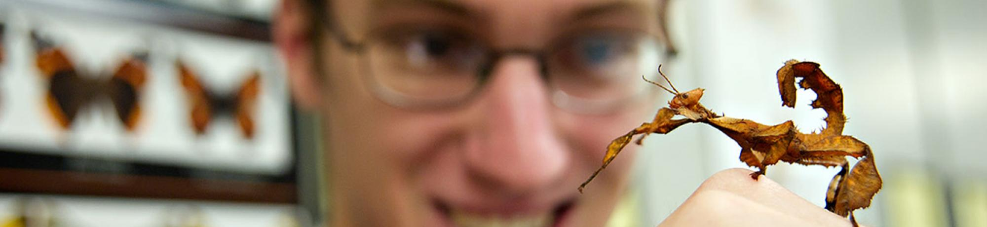 Student holding praying mantis