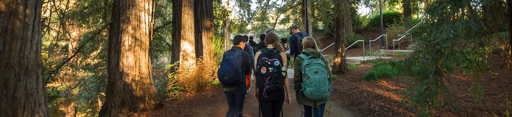 Students walking in the arboretum.
