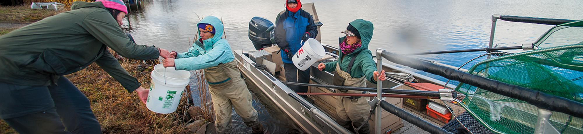 Faculty and students working together at the Fall River fish tagging event. (Photo by Val Atkinson)