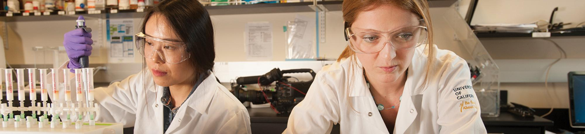 Two researchers working in a lab.